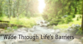 home_triptich_wade_thru_barriers